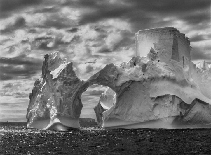 Salgado_Iceberg