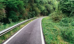 Asphalt cycling path in the woods in Italy