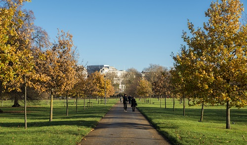 Pedestrians on a tree-lined path in Hyde Park, London during a beautiful Autumn day