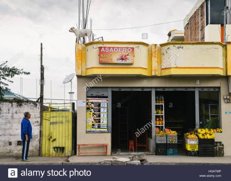 a-man-looking-up-at-a-dog-on-top-of-a-fruit-and-vegetable-shop-in-HGATMP