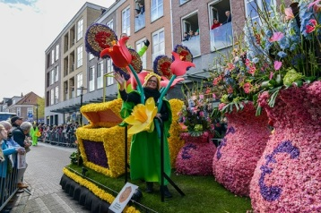The annual Bloemencorso (Flower Parade) for 2017 was held in the bulb growing area of the Netherlands and showcased a variety of flowers from the region