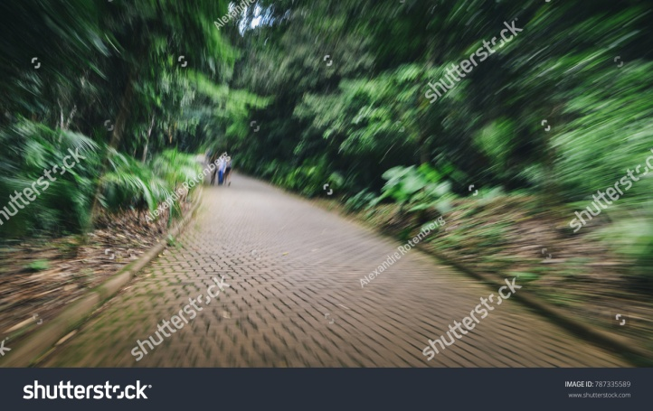stock-photo-purposely-out-of-of-focus-path-in-woods-with-people-headache-nausea-and-illness-metaphor-787335589