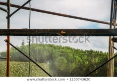 scaffolding-on-side-building-outdoors-450w-1230743620