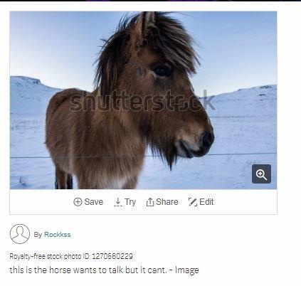 157140781_talkinghorse.jpg.22b14faf52e3a99ad3fc21cf66ddf7fb