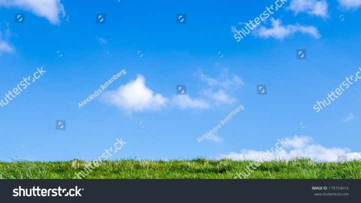 stock-photo-grass-and-blue-sky-179724614